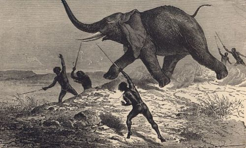 africa_big_game_elephant_hunt_natives